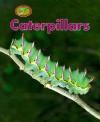 Caterpillars - Theresa Greenaway, Stuart Lafford, Chris Fairclough