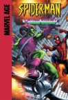 Spider-Man (Marvel Age): The Grotesque Adventure of the Green Goblin! - Mike Raicht, Stan Lee, Steve Ditko