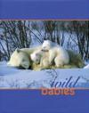 Wild Babies - Nan Richardson