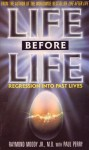 Life Before Life: Regression Into Past Lives - Raymond A. Moody Jr., Paul Perry