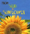 From Seed to Sunflower - Anita Ganeri