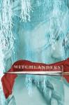 Witchlanders - Lena Coakley