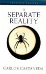A Separate Reality (Arkana) - Carlos Castaneda