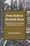 From Sicily to Elizabeth Street: Housing and Social Change Among Italian Immigrants, 1880-1930 (Suny Series in American Social History) (Suny Series, American Social History) - Donna R. Gabaccia