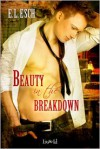 Beauty in the Breakdown - E.L. Esch