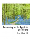 Commentary on the Epistle to the Hebrews - Franz Delitzsch