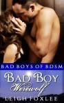 Bad Boy Werewolf: Bad Boys of BDSM (Werewolf New Adult BDSM Romance. Bad Boys of BDSM.) - Leigh Foxlee