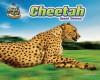 Cheetah: Speed Demon! - Natalie Lunis