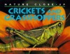Crickets And Grasshoppers (Nature Close Up) - Elaine Pascoe