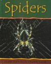 Spiders - Claire Llewellyn, Barrie Watts
