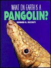 What on Earth Is a Pangolin? - Edward R. Ricciuti
