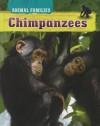 Chimpanzees - Tim Harris