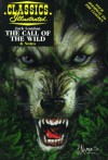 The Call of the Wild (Classics Illustrated) - Ken Fitch, Joshua Miller, Jack London