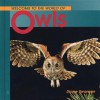 Welcome to the World of Owls - Diane Swanson