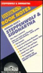 Hermann Hesse's Steppenwolf & Siddhartha - Tessa Krailing, Barron's Educational Series