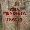 Ana Mendieta: Traces - Stephanie Rosenthal