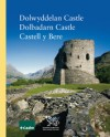 Dolwyddelan Castle - Dolbadarn Castle - Castell Y Bere - Richard Avent