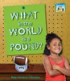 What in the World Is a Pound? - Mary Elizabeth Salzmann