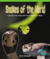 Snakes of the World - Kerri O'Donnell