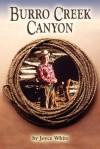 Burro Creek Canyon - Joyce White