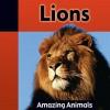 Lions - Jacqueline Dineen
