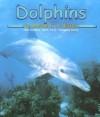 Dolphins - Martha E.H. Rustad