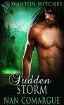 Sudden Storm - Nan Comargue