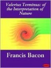 On The Interpretation Of Nature - Francis Bacon, Engel