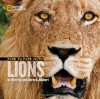 Face to Face with Lions - Beverly Joubert, Dereck Joubert