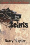Debris: A Collection of Short Fiction and Poetry - Barry Napier