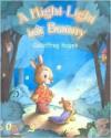 A Night-Light for Bunny - Geoffrey Hayes