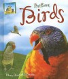 Brilliant Birds - Mary Elizabeth Salzmann, Cheryl A. Nobens