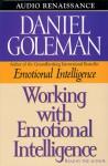 Working with Emotional Intelligence (Audio) - Daniel Goleman