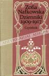 Dzienniki 1909-1917 - Zofia Nałkowska