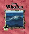 Gray Whales - Julie Murray