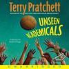 Unseen Academicals (Discworld, #37) - Terry Pratchett, Stephen Briggs