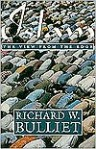 Islam: The View from the Edge - Richard W. Bulliet