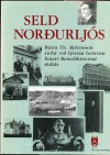 Seld norðurljós - Björn Th. Björnsson