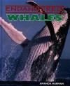 Whales - Amanda Harman, Casey Horton