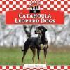 Catahoula Leopard Dogs - Joanne Mattern