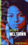 Meltdown - Scott Wallens