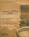 Animas-La Plata Project Volume VIII: Ridges Basin Excavations: Western Basin Sites - James M. Potter, James M. Potter