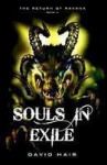 Souls in Exile - David Hair