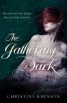 Gathering Dark - Christine Johnson