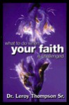 What to Do When Your Faith is Challenged - Leroy Thompson