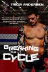 Breaking The Cycle (Hard Drive Series #1) - Tricia Andersen