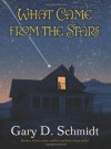 What Came from the Stars - Gary D. Schmidt