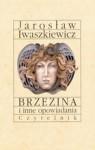Brzezina I Inne Opowiadania Ekranizowane - Jarosław Iwaszkiewicz
