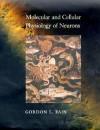 Molecular and Cellular Physiology of Neurons - Gordon L. Fain