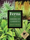 Ferns for American Gardens - John Mickel